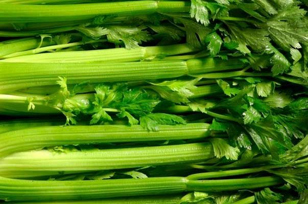 stabljikom celera