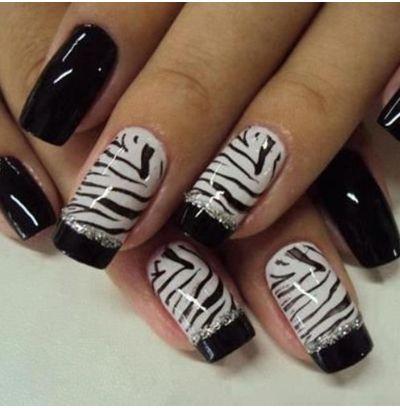 Francouzský-zebra