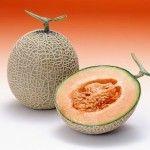 Dieta Melon