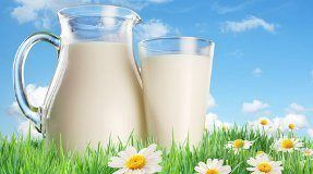 Recepty mlékárna dieta