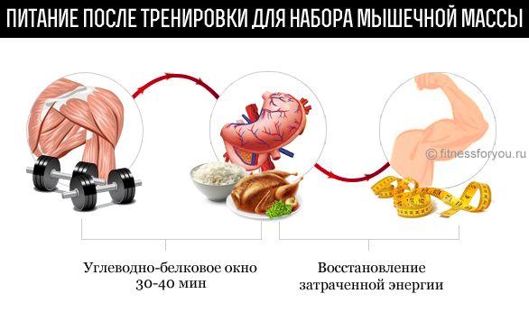 mršavljenje pravo jesti