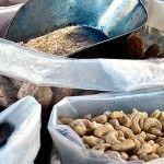 Nejužitečnější luštěniny, obiloviny a ořechy