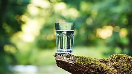 Voda, njegove vrste i postupci liječenja