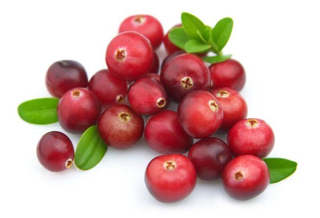 Dătătoare de viață proprietăți terapeutice potențiale ale Cranberries